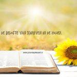 De belofte van schrijven in de zomer