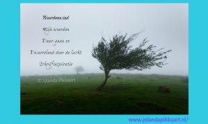 Woordenwind - elfje - Jolanda Pikkaart